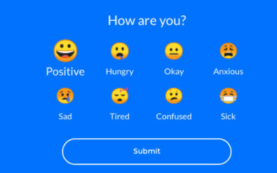 Vivi – a tool for checking in on student wellbeing